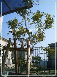 2011_0401_152047-CIMG7814 2.jpg