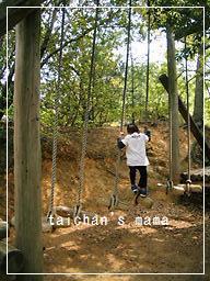 2011_0430_111517-CIMG8015 2.jpg
