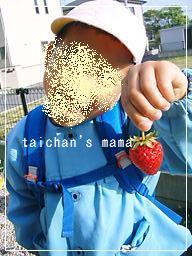 2011_0513_163655-CIMG8178 2.jpg