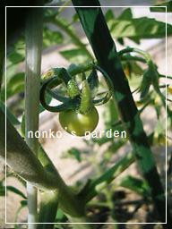 2011_0520_083956-CIMG8219 2.jpg