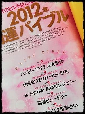 2012_0104_114528-CIMG0187 2.JPG