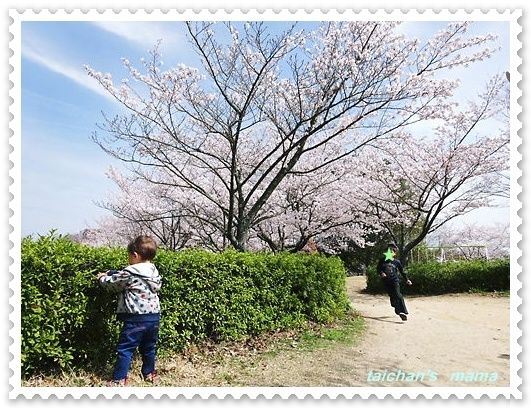 2014_0401_110103-DSC01774 2.JPG
