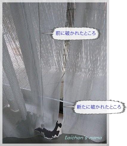 2014_0910_172549-DSC03428 2.JPG