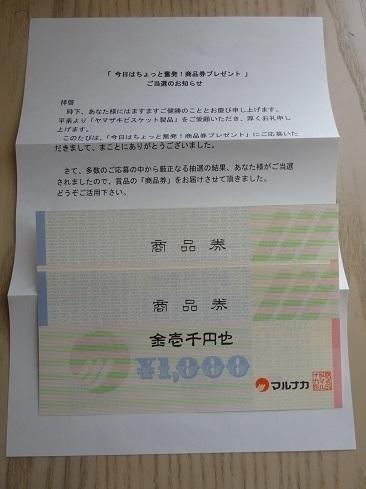 DSC01680 2.jpg