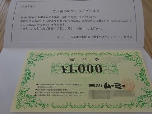 DSC02809.jpg 2.jpg