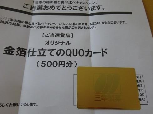 DSC02840.jpg 2.jpg