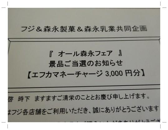 DSC08010 2.jpg