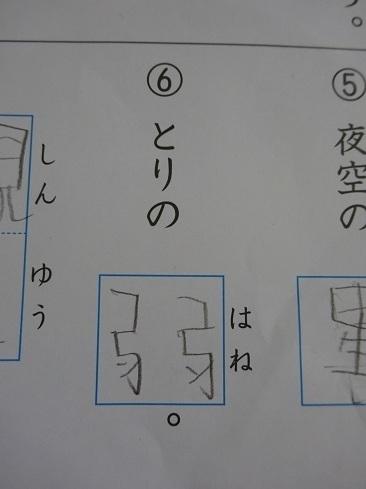 DSC08886.jpg  2.jpg