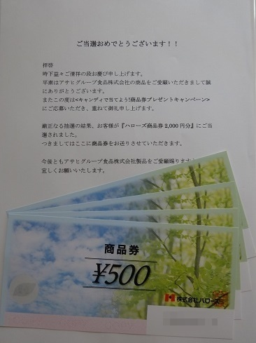 DSC08992 2.jpg